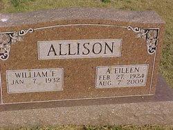 Audrey Eileen <i>Singleton</i> Allison