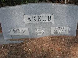 Yacub R. Akkub