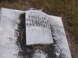 Phoebe H <i>Clark</i> Anderson