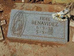 Fidel Benavidez
