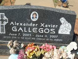 Alexander Xavier Gallegos