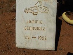 Ermino Benavidez
