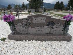Mark W. Allen