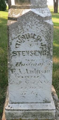 Gunhild J <i>Stenseng</i> Anderson