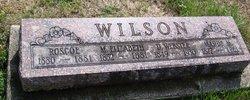 D. Webster Wilson