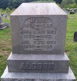 Jesse Alcorn