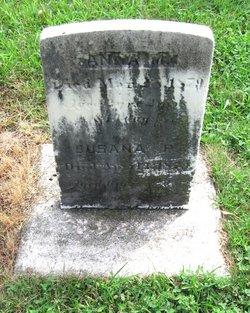 Anna M. Barley