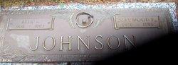 Alta E. Johnson