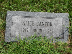 Alice Cantor