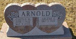 Arlene E <i>Doster</i> Arnold