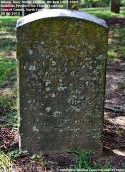 Mary Arabella Mollie <i>Mitchell</i> Allison