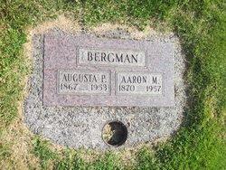 Aaron M Bergman