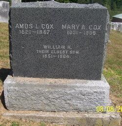 Mary Ann <i>Flagg</i> Cox