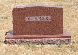 Charles F Hammer
