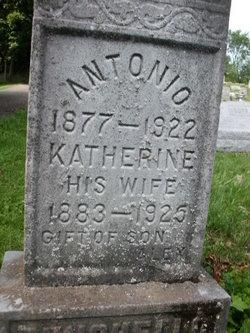 Katherine <i>Quattrini</i> Punchello