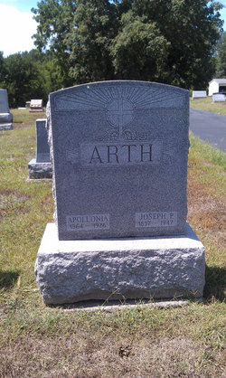 Apollonia P <i>Strauss</i> Arth