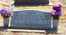 Lucy Jean <i>Gibbons</i> Levy