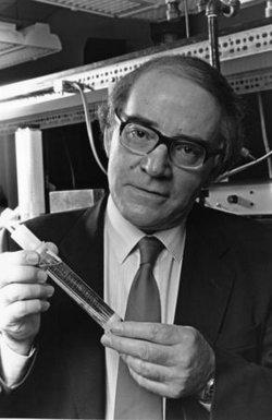Dr Martin Fleischmann