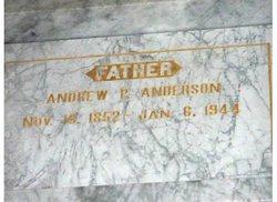 Andrew P Anderson