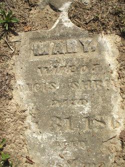 Mary Shriner