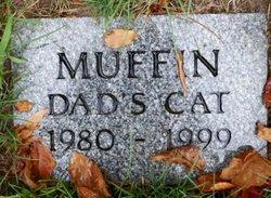Muffin ,