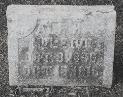 Alpheus Hinton McLeod