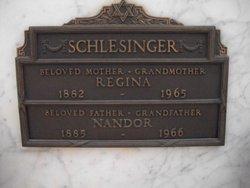 Nandor Schlesinger