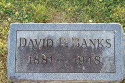 David P. Banks