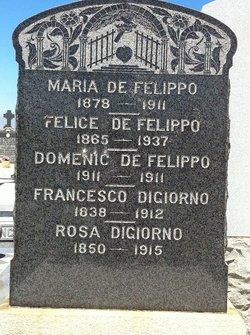 Felice DeFelippo