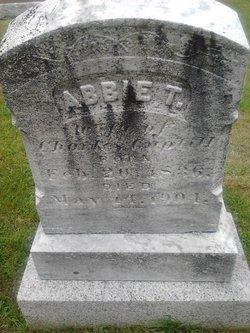 Abbie T Guptill