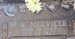 William Albert Melville Andrus