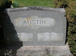 Robert J Austin