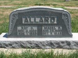 Mabel Daisy <i>Alpen</i> Allard