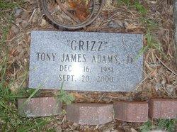 Tony James Grizz Adams, Jr