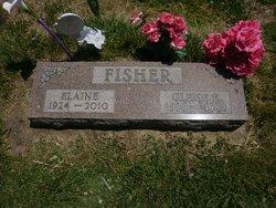 Elaine <i>Brookshier</i> Fisher