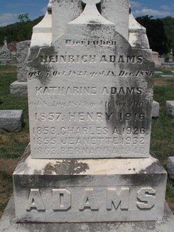 Heinrich Henry Adams