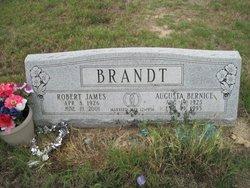 Augusta Bernice Brandt