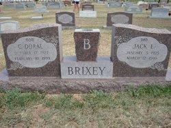 Doral C <i>Fowler</i> Brixey