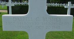 SSgt Darrell C Bushey