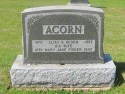 Elias B Acorn