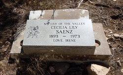 Cecilia Lily Celia S�enz