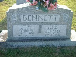Andy L. Bennett