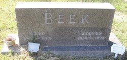Steven Lynn Beek