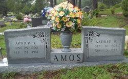 Nathlee Ozella <i>Snider</i> Amos
