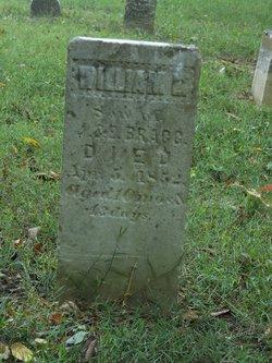 William L Bragg