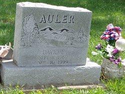 David Francis Auler