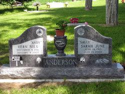 Sarah June Sally <i>Nixon</i> Anderson