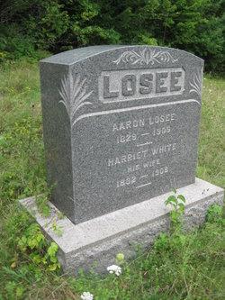 Aaron Newman Losee