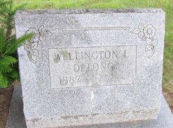 Wellington L DeLong
