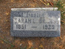Sarah Louise <i>Trammell</i> Briggs
